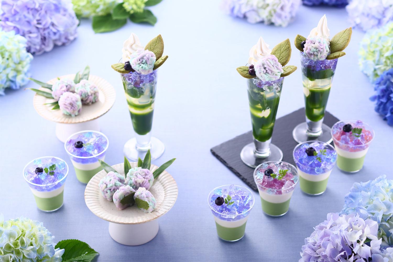 抹茶×紫陽花まつり2019