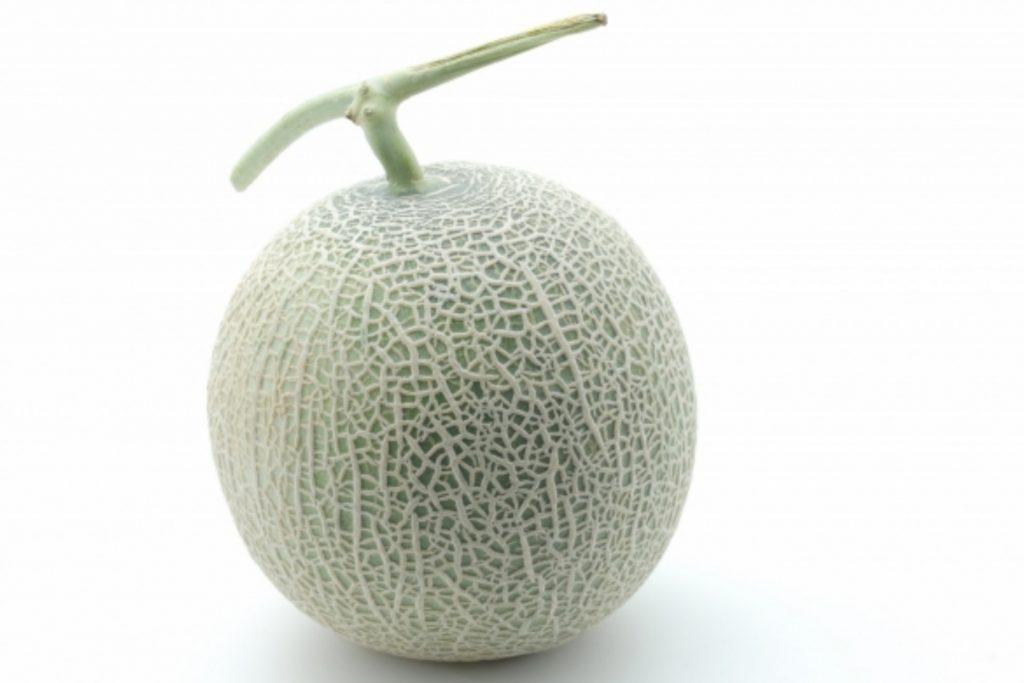 旬果実メロン